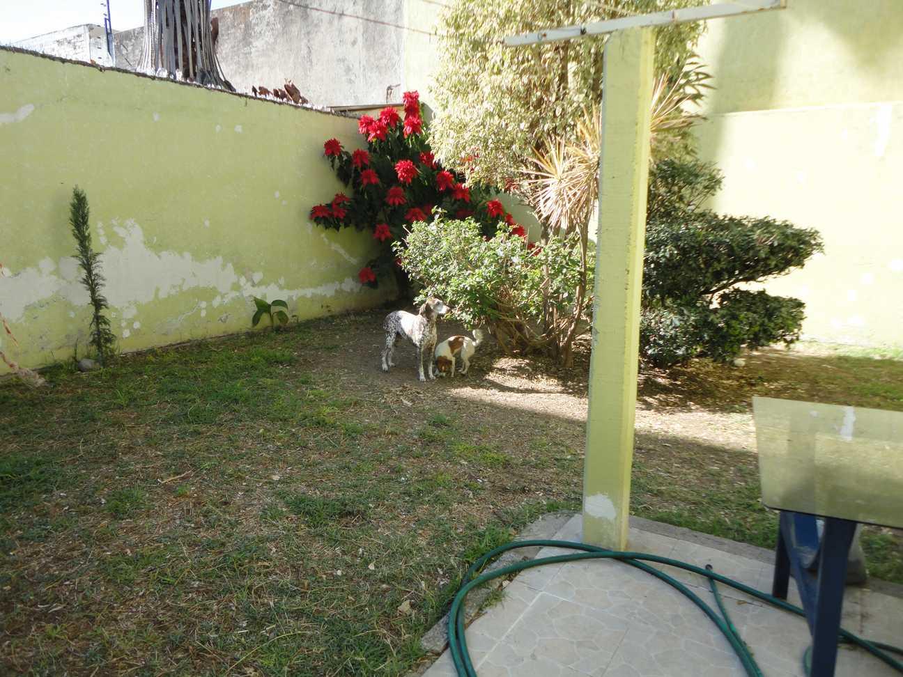 perros lia y lulu
