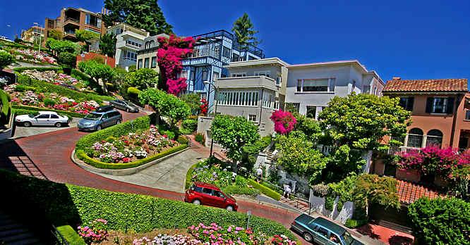 PAPA San-Francisco-lombard-st