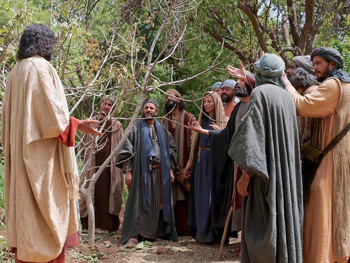Jesus-maldice-la-higuera-esteril