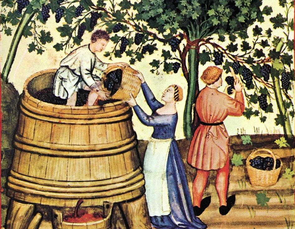 edad media y el vino