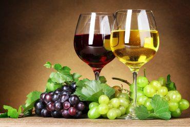 el-arte-de-la-degustacion-de-los-vinos-