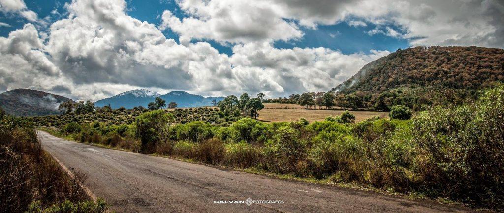 sierra-de-patamban-michoacan-ricardo-galvan